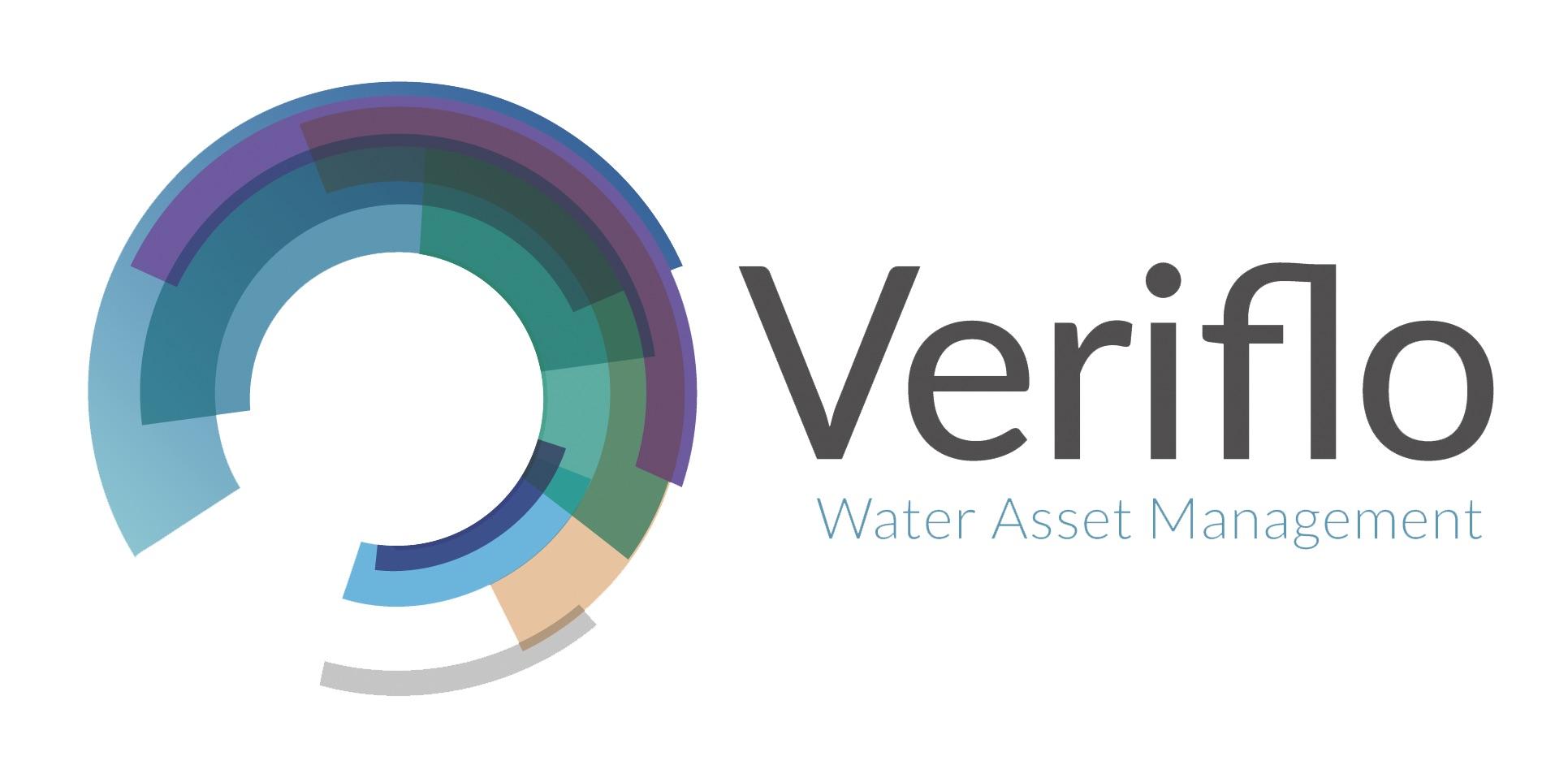 Veriflo Final logo (with strapline)-01-3